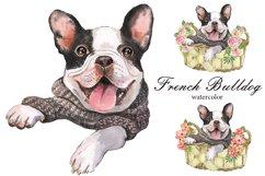 French Bulldog Watercolor dog clipart. Watercolor pet Product Image 1