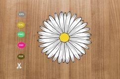 daisy svg cut file,daisy silhouette,flower svg for cricut Product Image 3