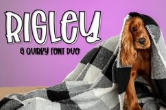Web Font Rigley - A Quirky Font Duo Product Image 1