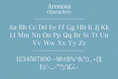 Arenosa | textured serif font Product Image 4