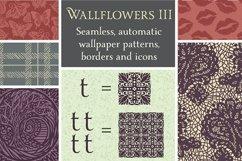 Wallflowers III Product Image 1