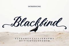 Blackbird Product Image 1
