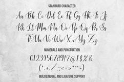Namaqua - Calligraphy Font Product Image 2
