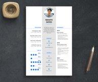 2 Nursing Indesign Resume Templates Product Image 2