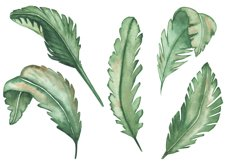 Watercolor tropical green leaves set and pattern Product Image 3
