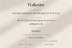 Walkester Font Duo Product Image 3