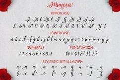 Web Font Mimosa Script Product Image 6