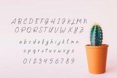Larasaky | Handwriting Font Product Image 3