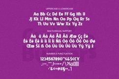 Web Font Philo Font Product Image 5