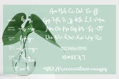 Green afocado Product Image 3