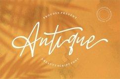 Web Font Antique - A Beauty Script Font Product Image 5