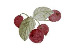Autumn clipart Watercolor oak leaf, red berries, acorn, twig Product Image 5