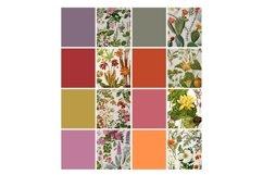 Vintage Botanical Full Page Floral Sheets 8.5 x 11, PDF Product Image 5