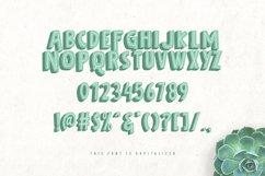 Bolder Typeface Product Image 3