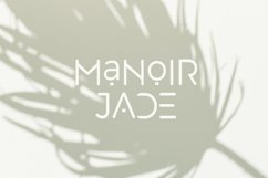 Manoir Jade. Sans Serif Font Product Image 8