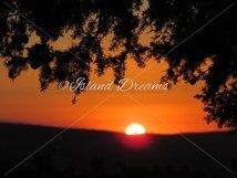 Sunset Backdrop  Product Image 1