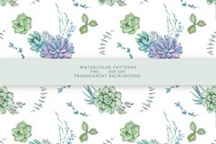 Succulents Seamless Patterns Product Image 16