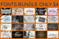 Bundle Font Package Only $4 Product Image 1