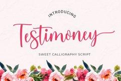 Testimoney modern script Product Image 1