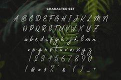 Web Font Santiar Product Image 4