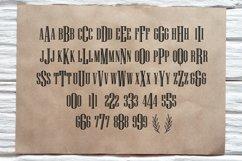 BIG Monogram Cut File & Font Bundle | The Ultimate Bundle! Product Image 2