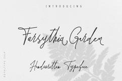 Forsythia Garden |Signature Typeface Product Image 1
