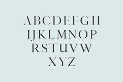 Sharis Serif Typeface Product Image 2