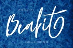 Beabit - A Stylish Script Font Product Image 1