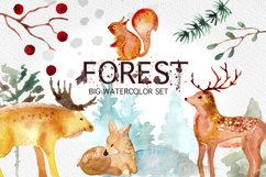 Winter Forest Watercolor Graphic Set Product Image 1