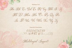 Madelican Calligraphy Font Product Image 3