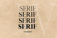 QUEEN, An Elegant Serif Font Product Image 5