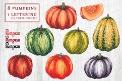 Fall watercolor pumpkins JPG PNG Product Image 2