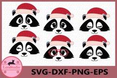 Raccoon Face SVG, Christmas svg, Raccoon Eyelashes Face Product Image 1
