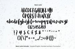 Lemon Juice Script Font Product Image 2
