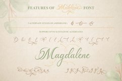Madelican Calligraphy Font Product Image 4