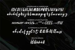 Web Font Bambita - A Stylish Brush Font Product Image 5