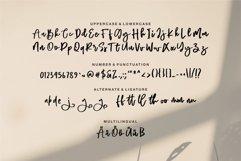 Rafella - Brush Script Font Product Image 3