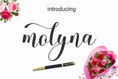 Molyna Product Image 1
