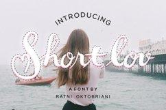 Short Lov - A Script Font Product Image 1