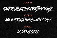 Basic Instinct Typeface Product Image 6