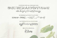 Web Font Bashiel - Handwritten Font Product Image 6