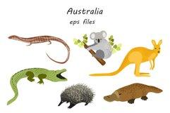 Australian Animals Product Image 5