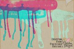 Dripping Paint Photoshop Brushes Product Image 5