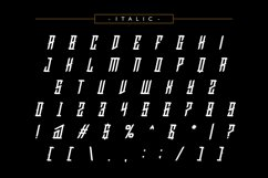 HawkClaw Decorative Typeface Product Image 4
