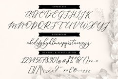 Dellaine   A Carefully Handcrafted Script Font Product Image 5