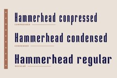 Hammerhead Typeface | Font Product Image 3
