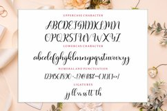Aishagia Script Product Image 4