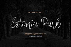 Estonia Park Product Image 1