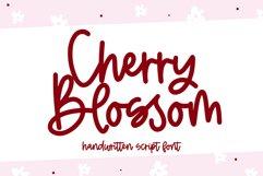 Cherry Blossom - A Handwritten Script Font Product Image 1