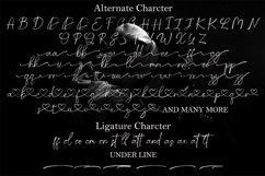 Pattrick Regan Signature Font Product Image 8